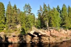 Ancient forest in Imatra, Finland