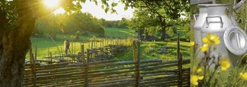 Urlaub auf einem Bauernhof in Schweden