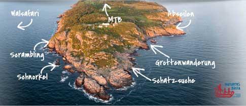 whalewaching und cliffjumping skWhalewatching, Cliffjumping & Co. - Unerwartete Abenteuer in Skåne