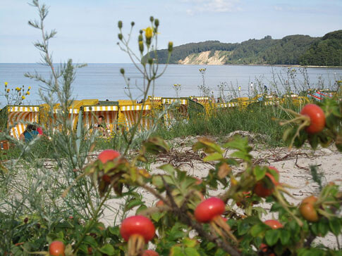 Düne und Strand Granitzer Ort, Binz