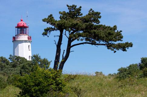 Der Leuchtturm auf der Insel Hiddensee