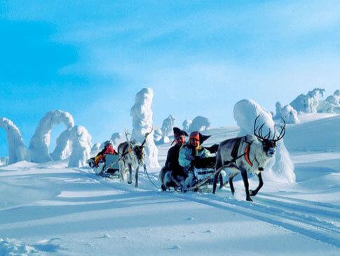 Rentierschlittenfahrt in Finnland mit DERTOUR