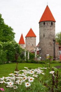 Die Kontrolltürme von Tallinn