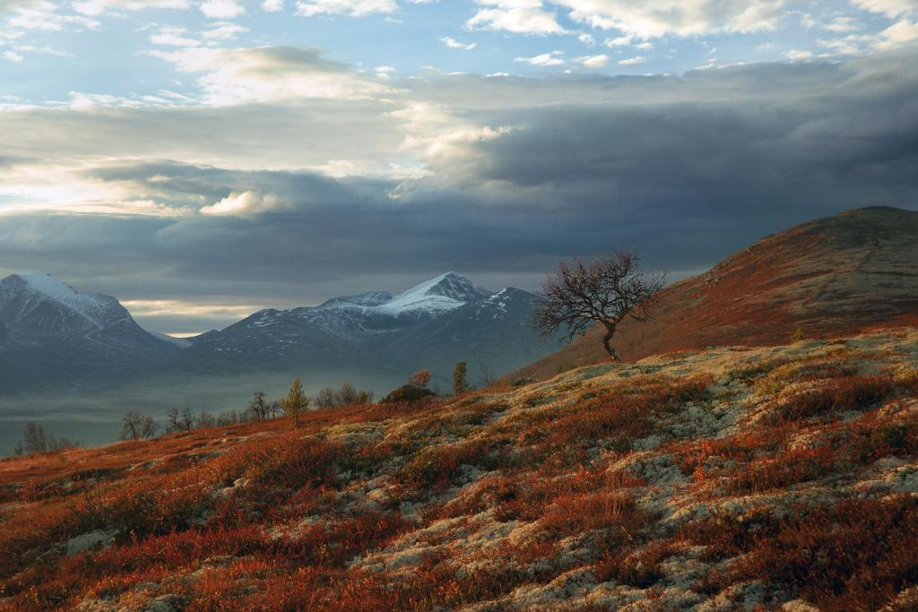 rondane-nationalpark