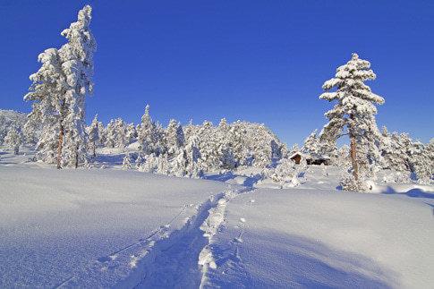 Winter in Norwegen, faszinierend!
